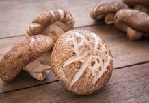 shiitake mushroom benefits